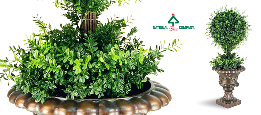 Shrubbery - National Tree Company Home